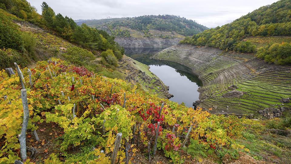 Ribera Sacra wine region