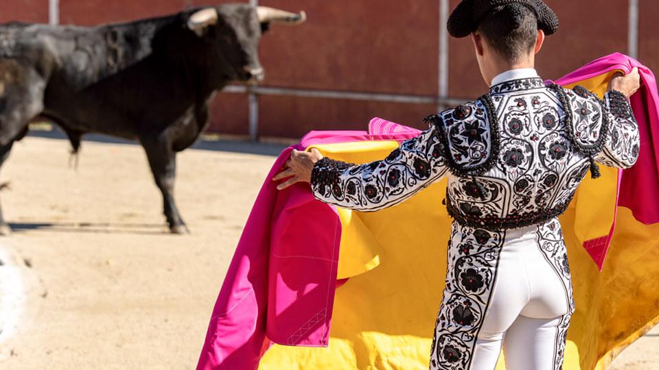 Bullfighter in a bullfight. Spain
