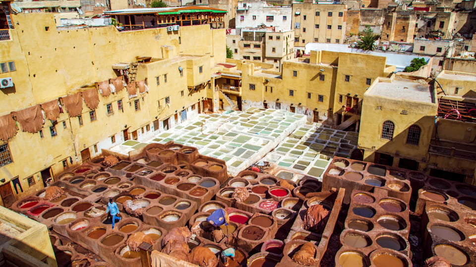 Tanneries - Medina of Fez