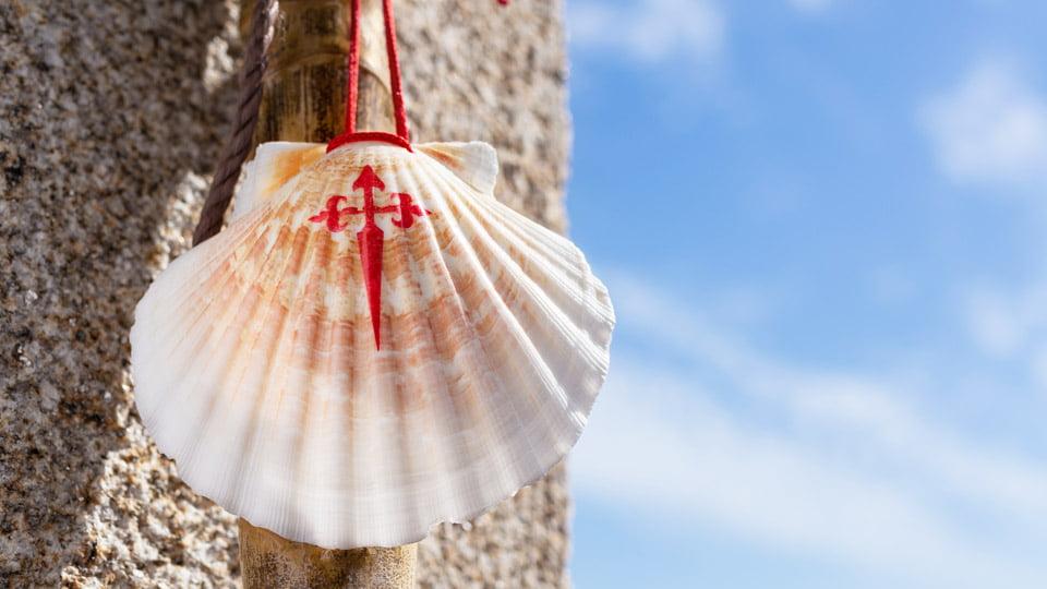 Walking stick and seashell - Camino de Santiago