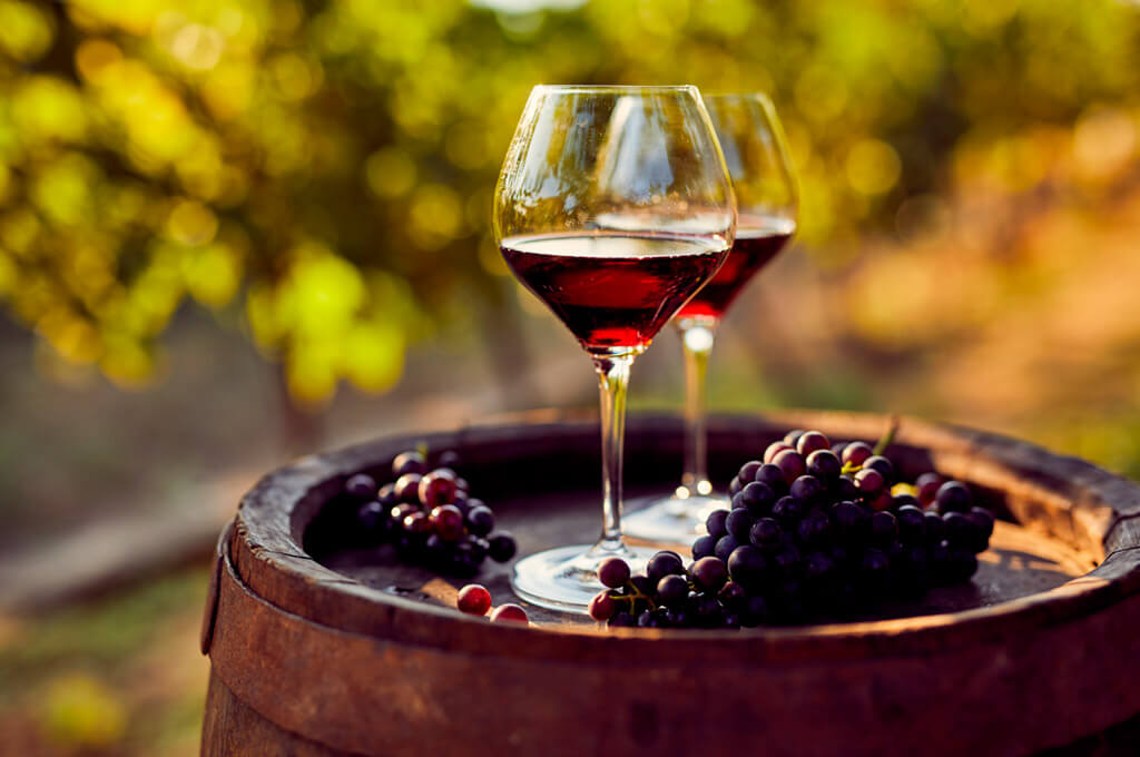 Tasting of the famous wine of La Rioja, Spain